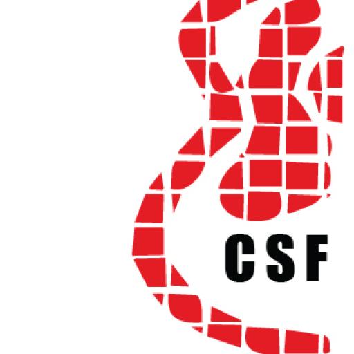 cropped-CSF-LOGO-new-WEB3logo2.png